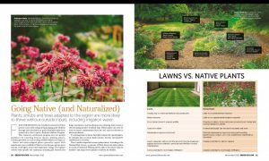 PDX Backyard Habitat in Green Builder magazine