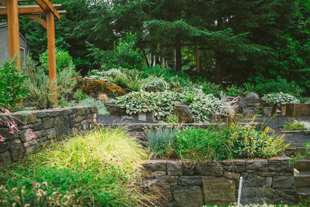 nw portland audubon certified backyard habitat backyard habitat 24
