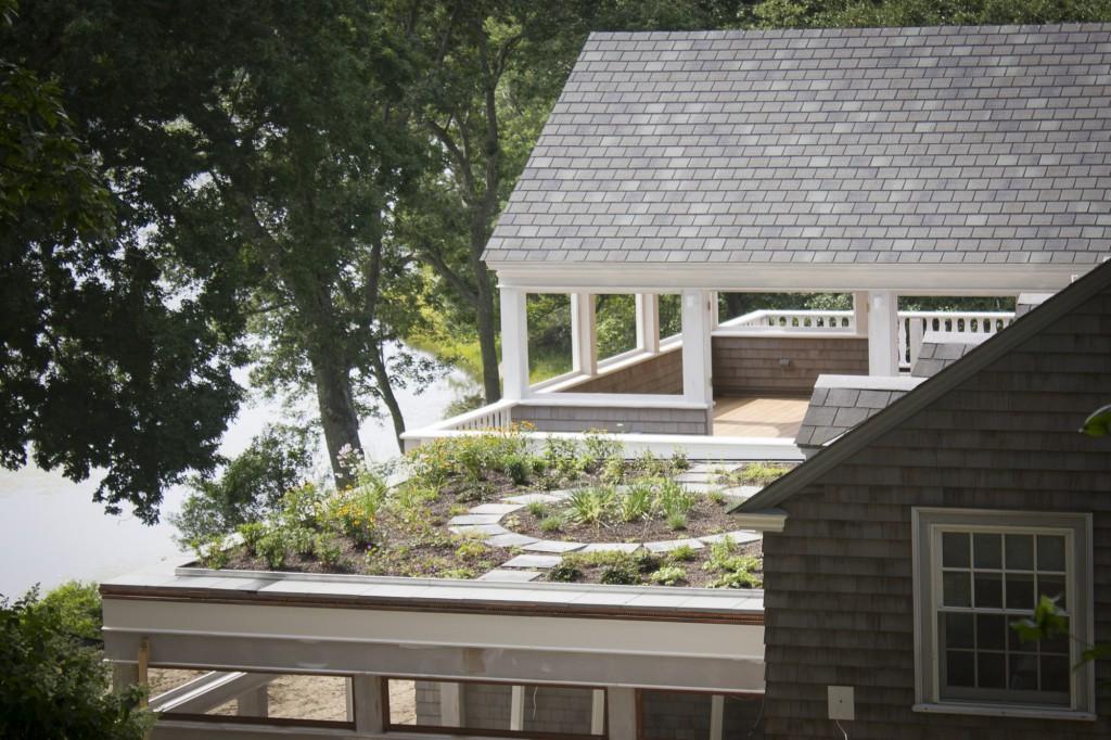 Rhode Island Residential Green Roof