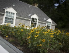 Rhode Island Residential Green Roof