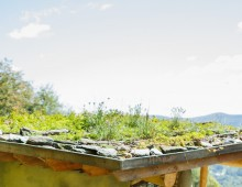 Yestermorrow Green Roof Design & Installation